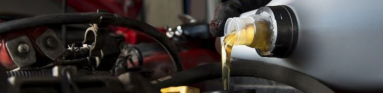 Replace Your Old Oil with a Batch of Fresh, Golden Liquid!