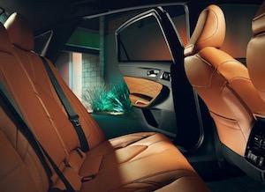 Interior trim in the 2019 Toyota Avalon