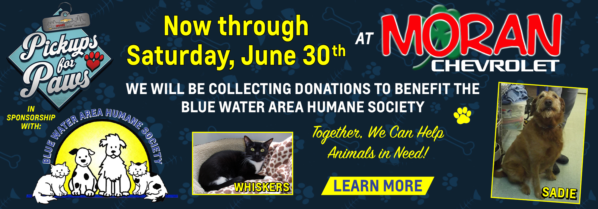 Blue Water Area Humane Society Needs Your Help!