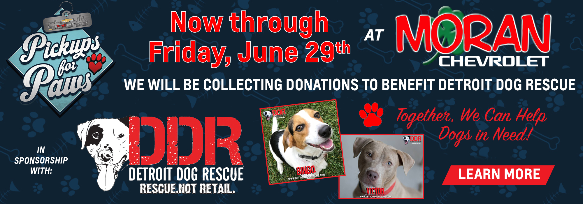 Donate to Detroit Dog Rescue Today!