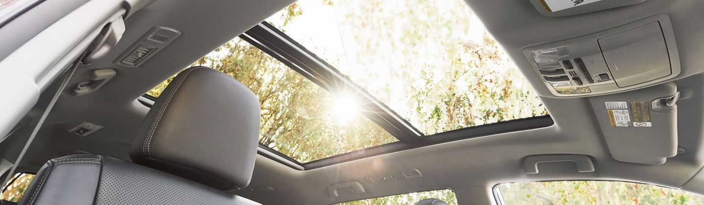 Endless Possibilities in the Highlander!