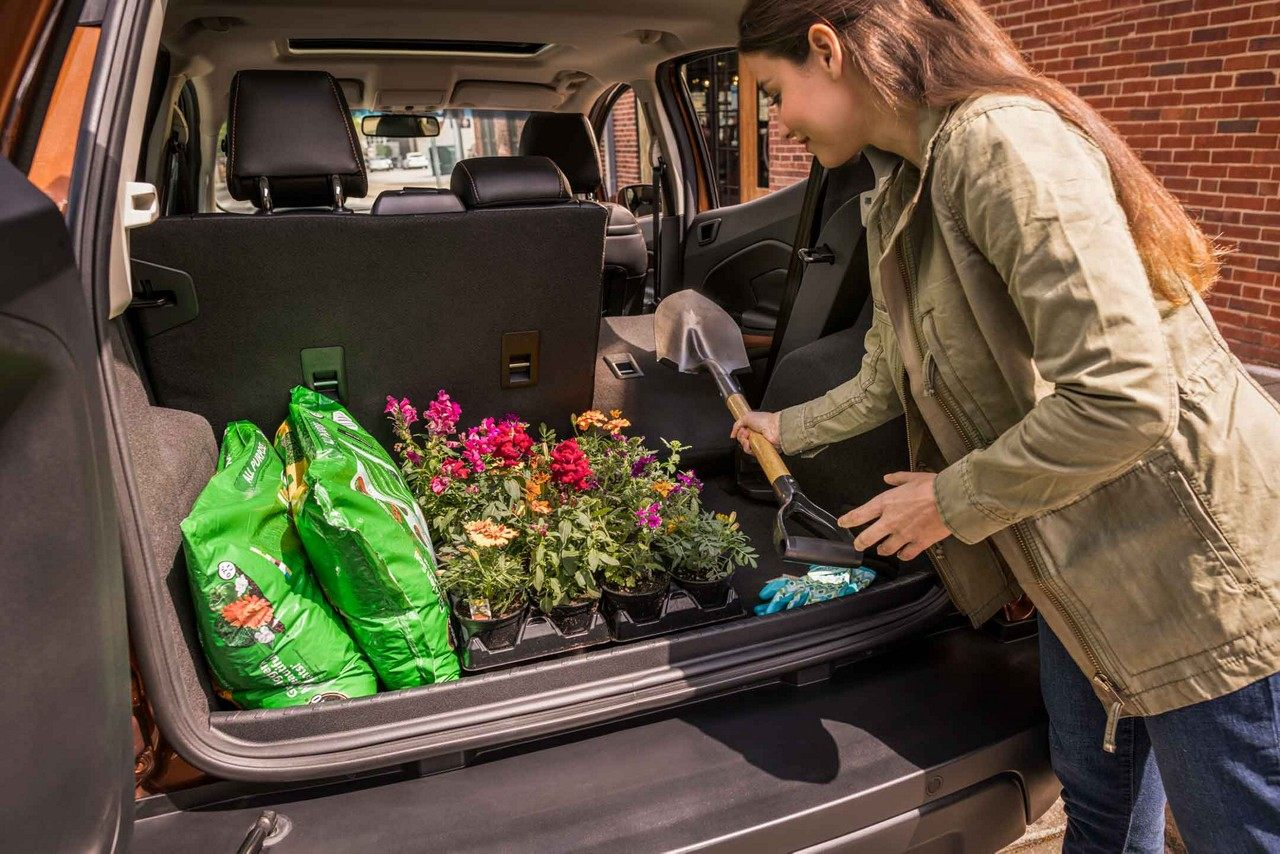 Cargo Options in the EcoSport
