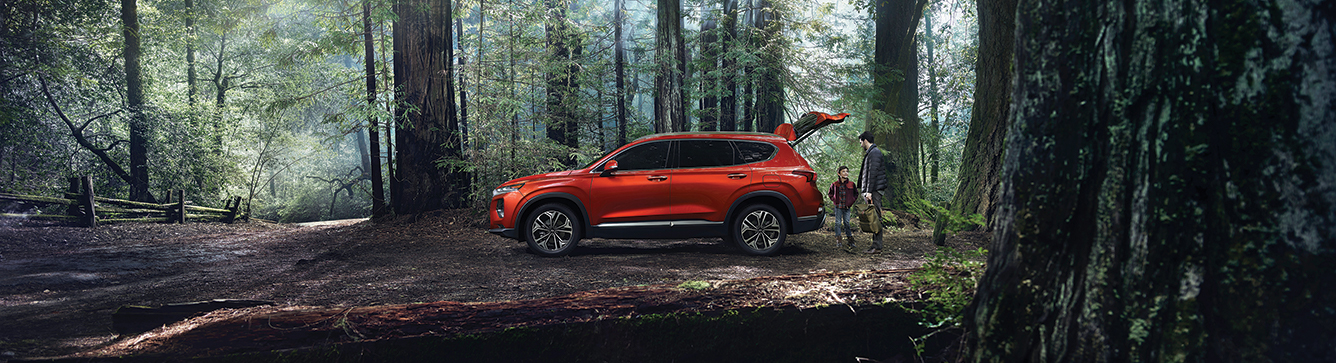 2018 Hyundai Santa Fe parked in a forest