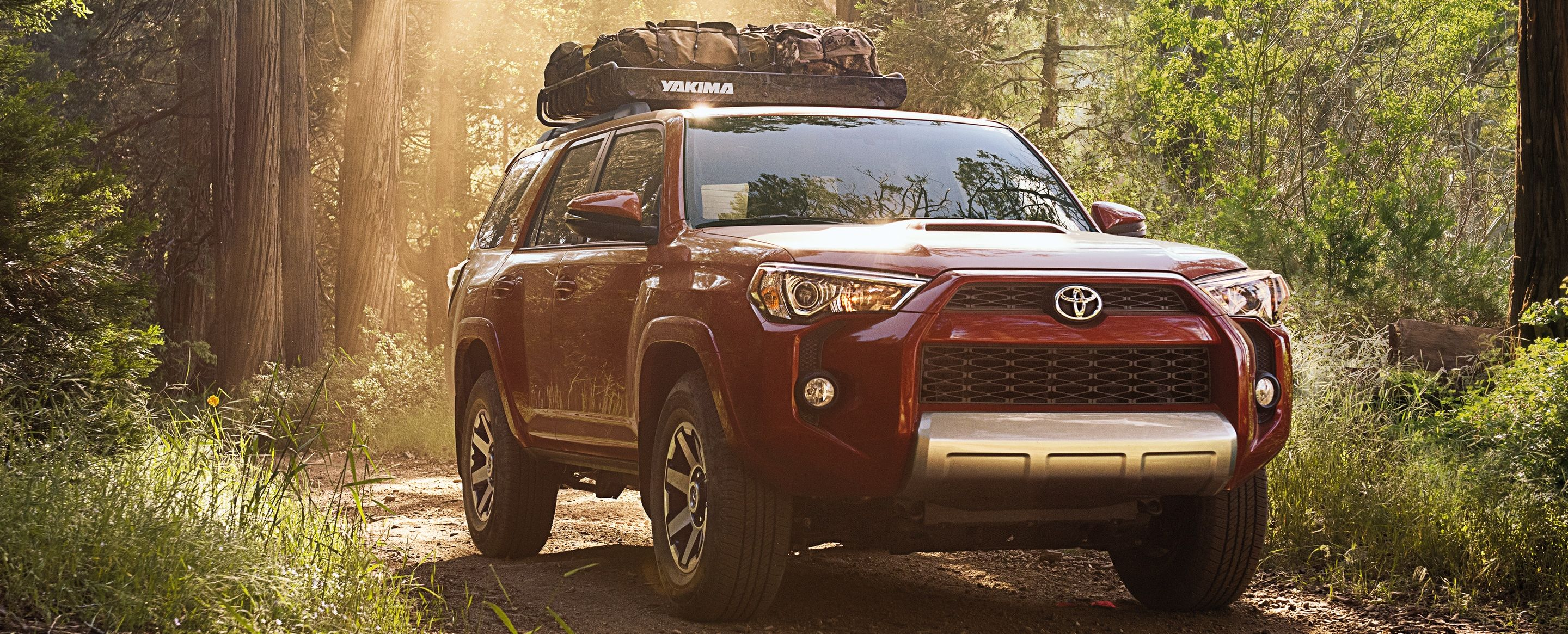2019 Toyota 4Runner for Sale near Lee s Summit MO Molle Toyota