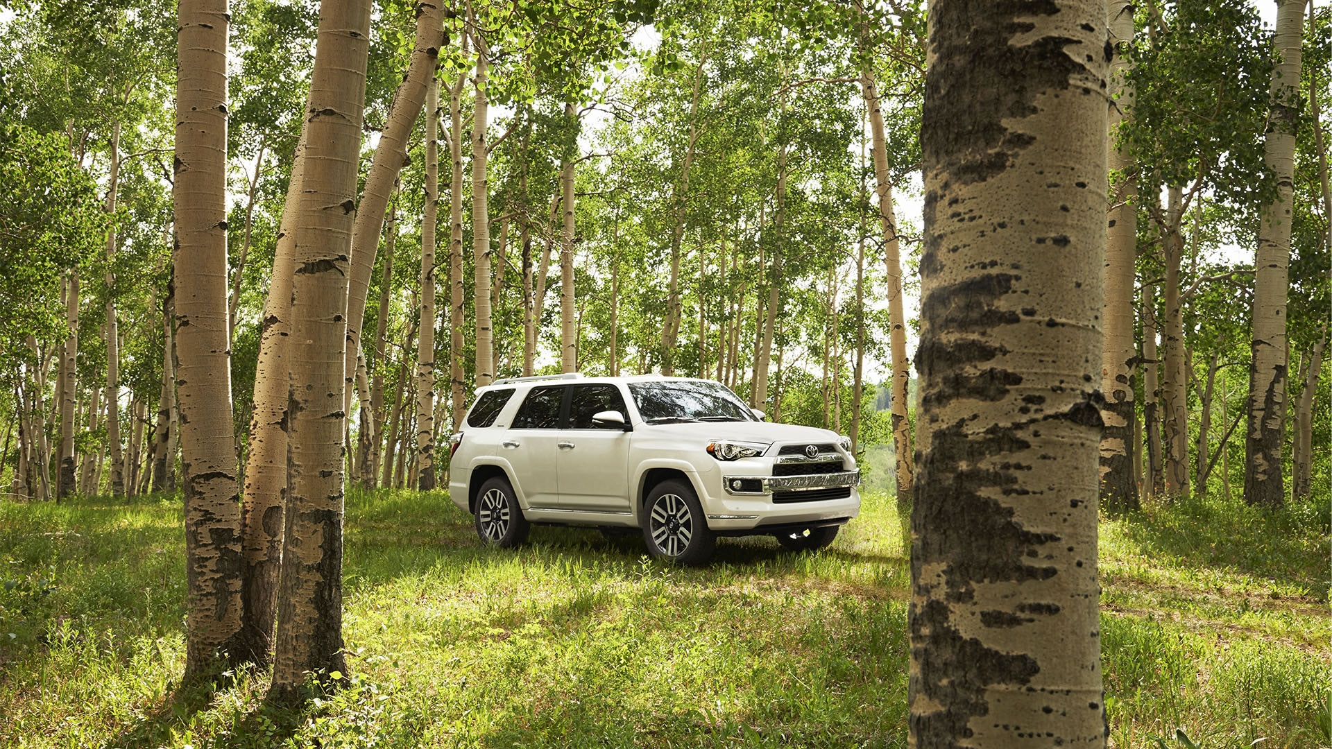 2019 Toyota 4Runner for Sale near Olathe, KS