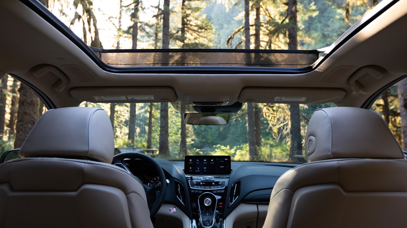 Enjoy Experiencing Nature With the RDX's Sunroof!