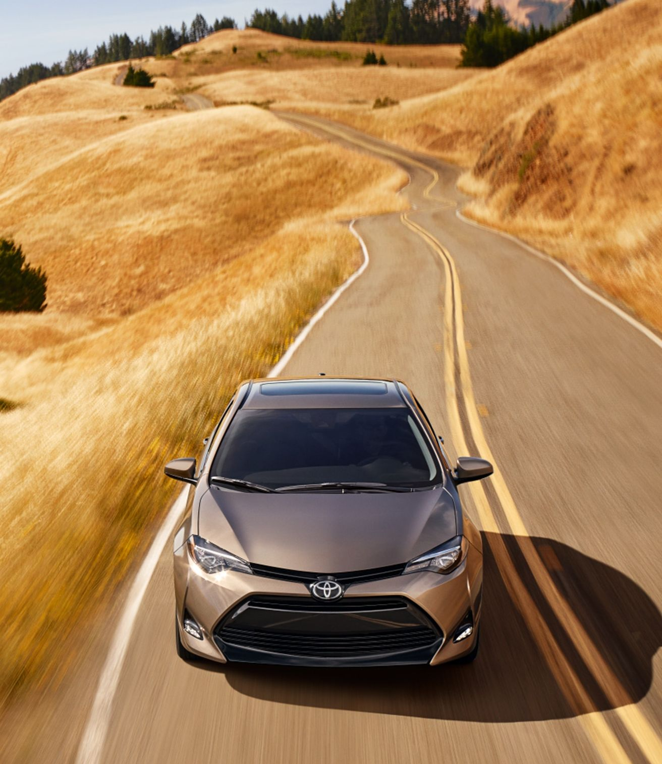 2019 Toyota Corolla Leasing in Newark, DE