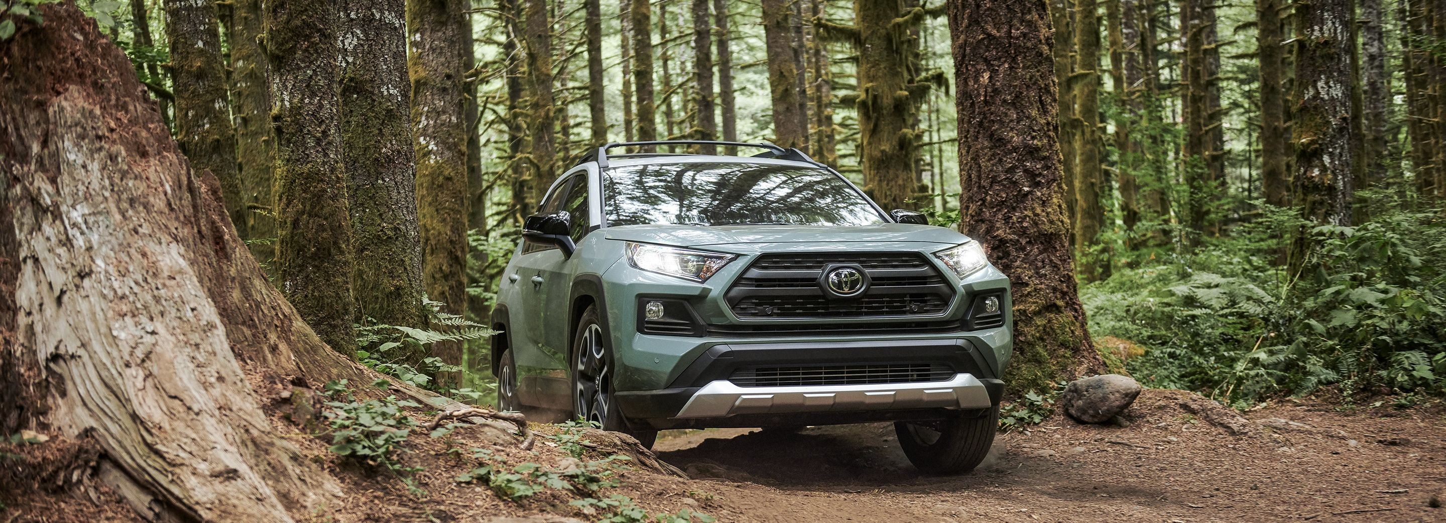 What's New for the 2019 RAV4?