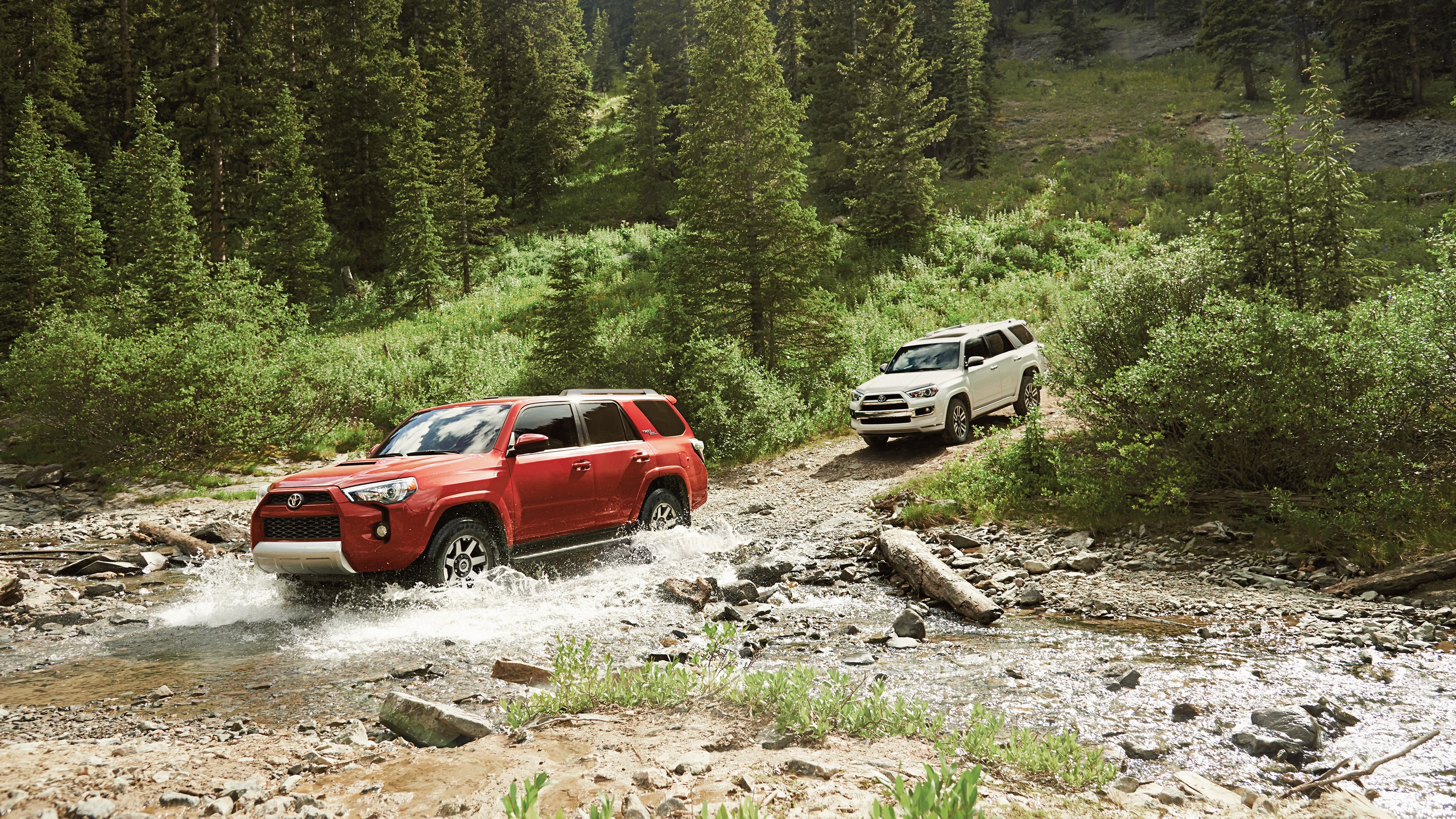 2019 Toyota 4Runner for Sale near Toledo, OH