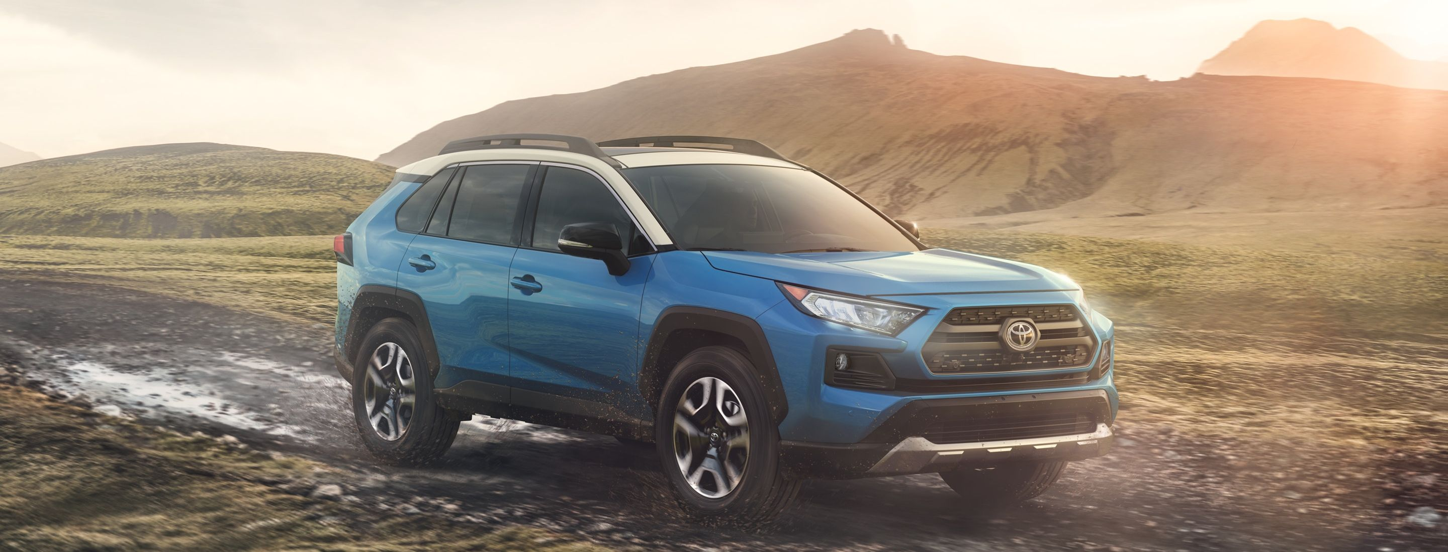 2019 Toyota RAV4 for Sale near Cedar Rapids, IA