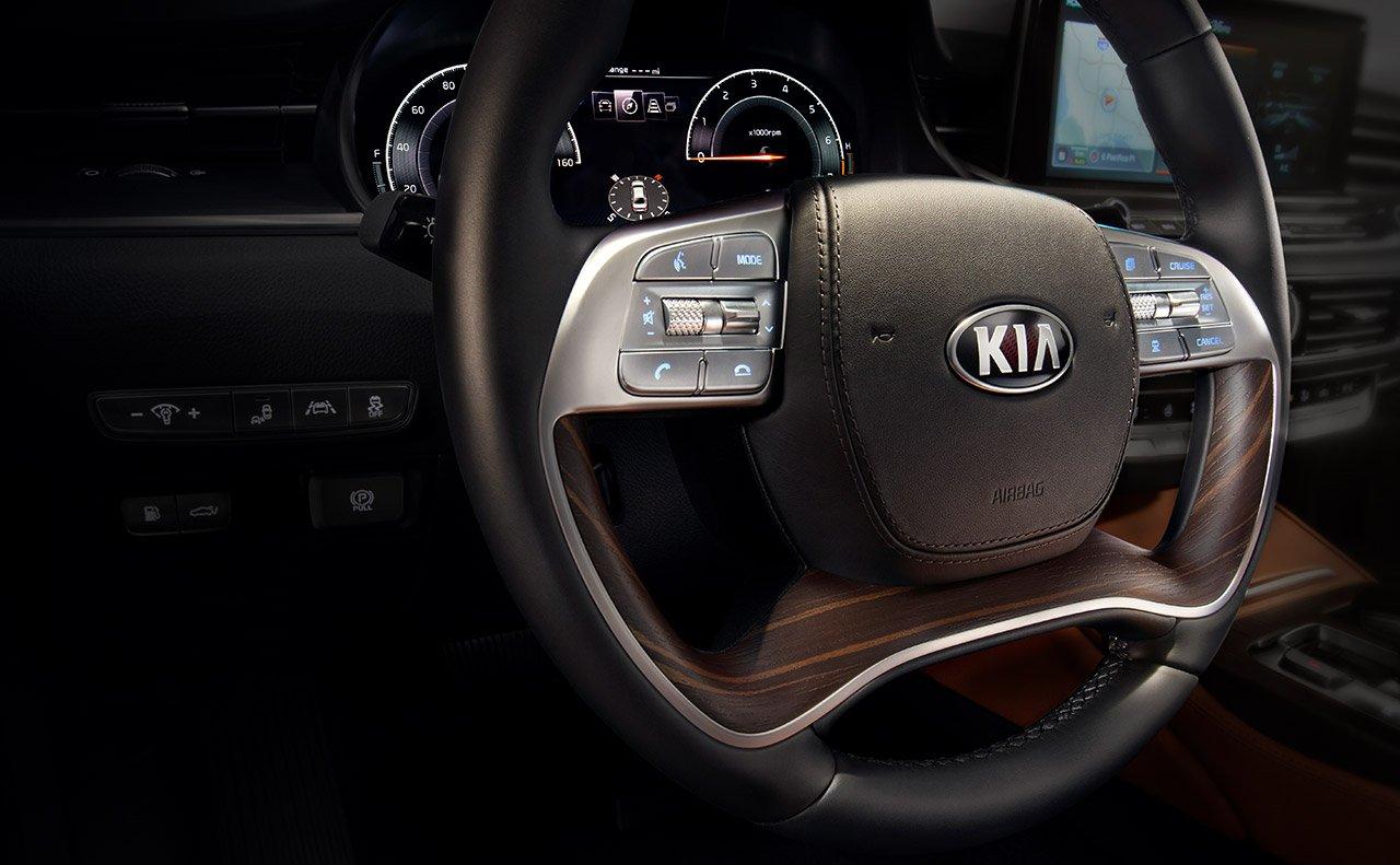 2019 Kia K900 Steering Wheel