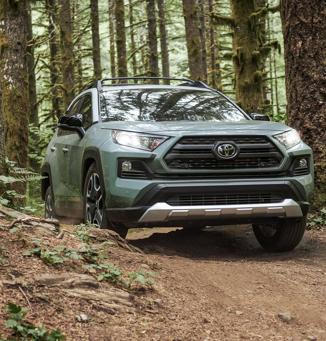 2019 Toyota RAV4 for Sale near Elmhurst, IL