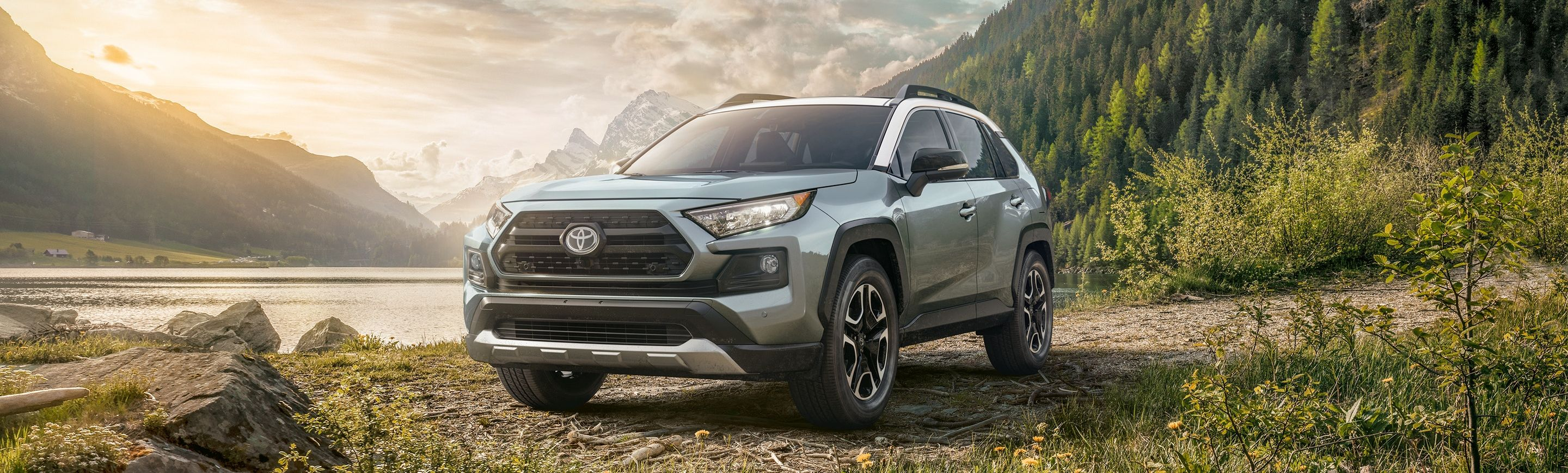 2019 Toyota RAV4 for Sale near Cleveland, OH