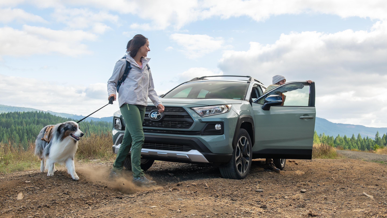 2019 Toyota RAV4 for Sale near Columbia, MO