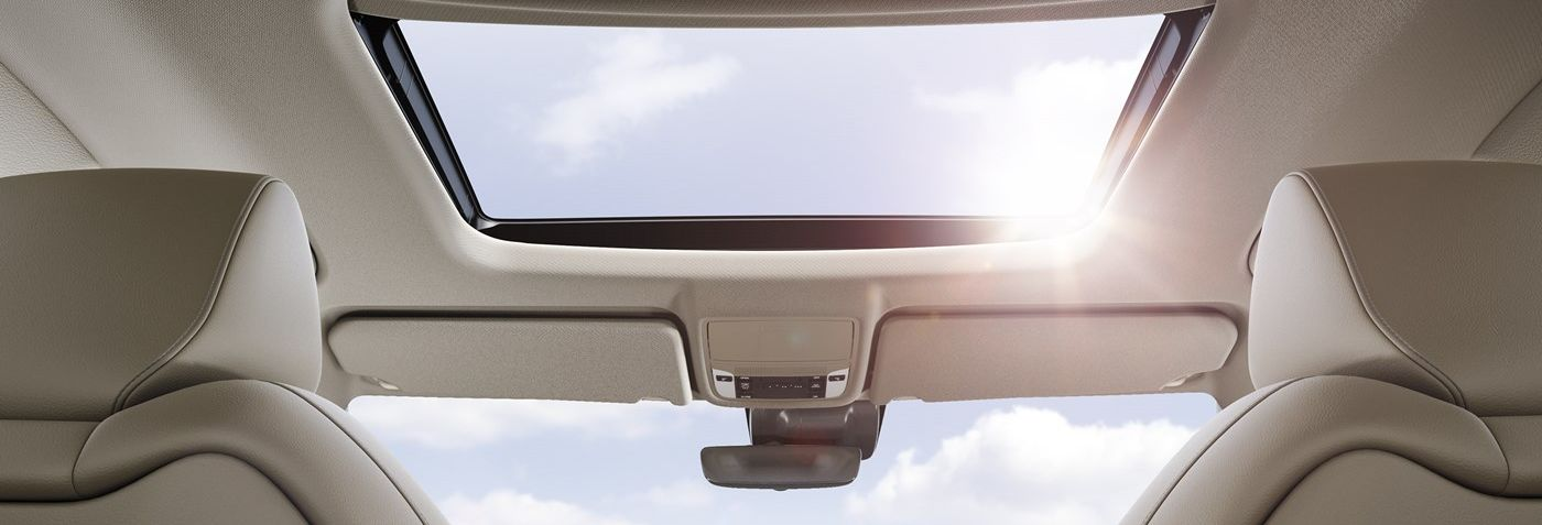 Moonroof in the 2019 MDX