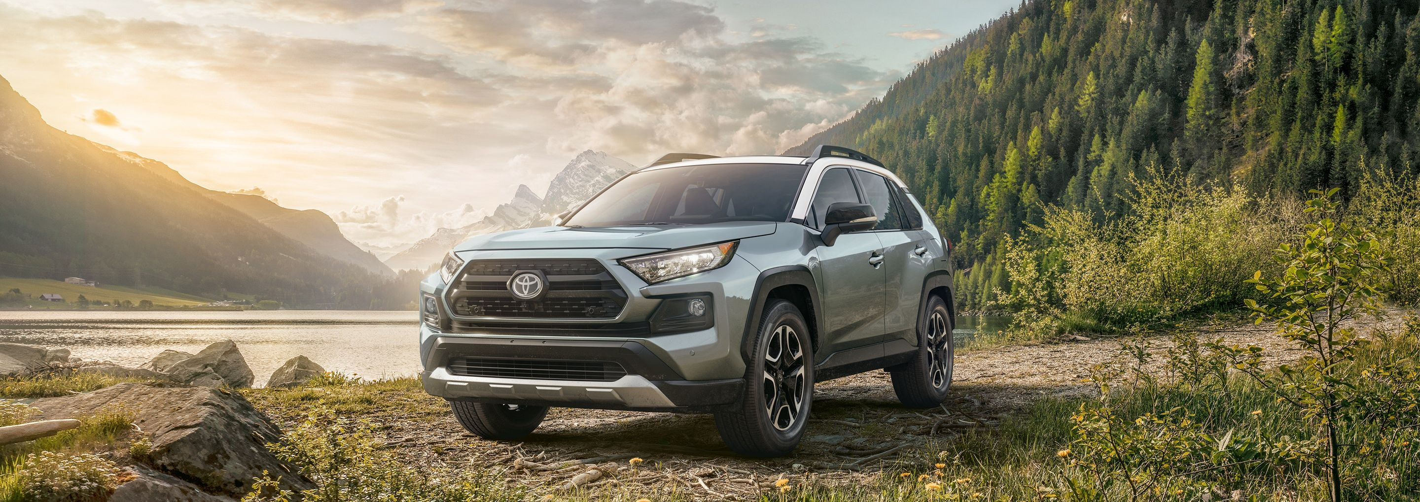 2019 Toyota RAV4 Leasing near Oak Brook, IL