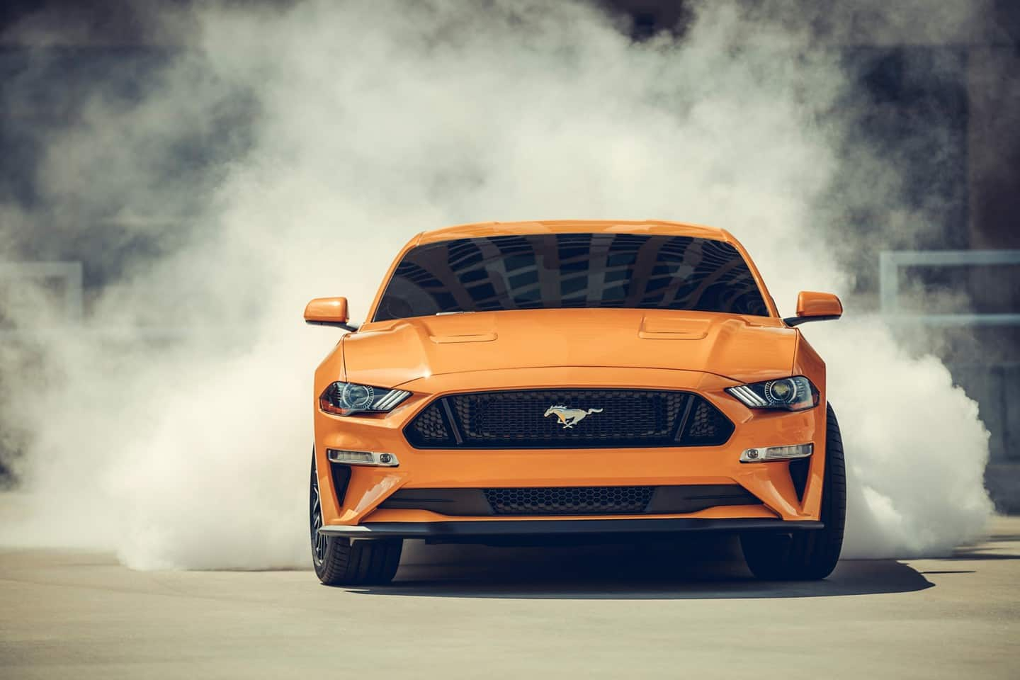 2019 Ford Mustang Trim Levels near Libertyville, IL