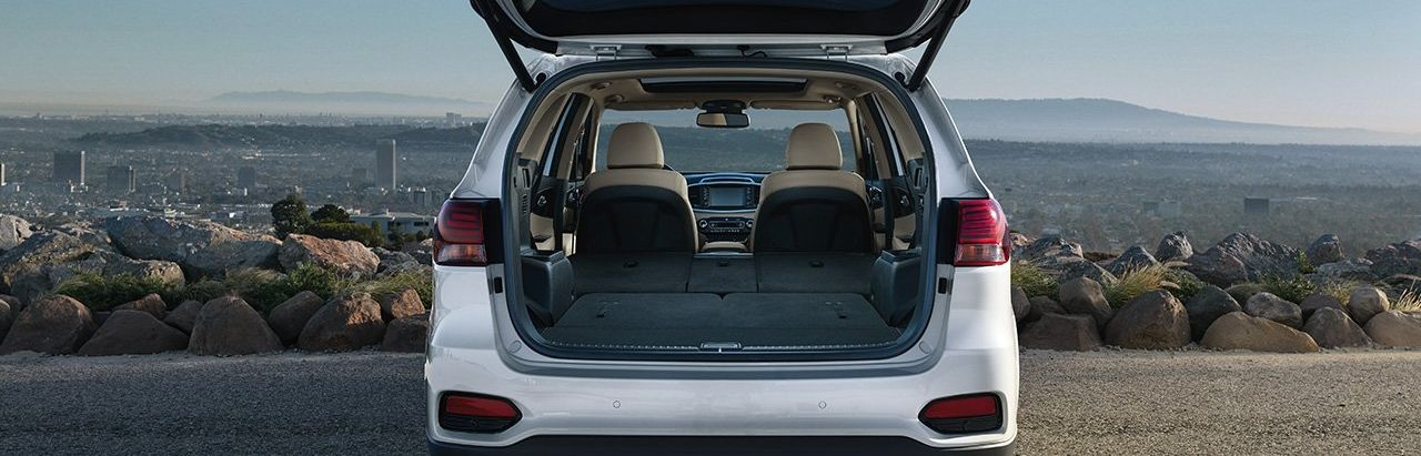 Tons of Cargo Space in the Sorento!