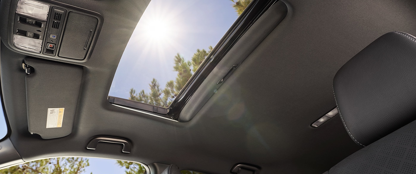 Feel the Breeze While Cruising in the Passport!