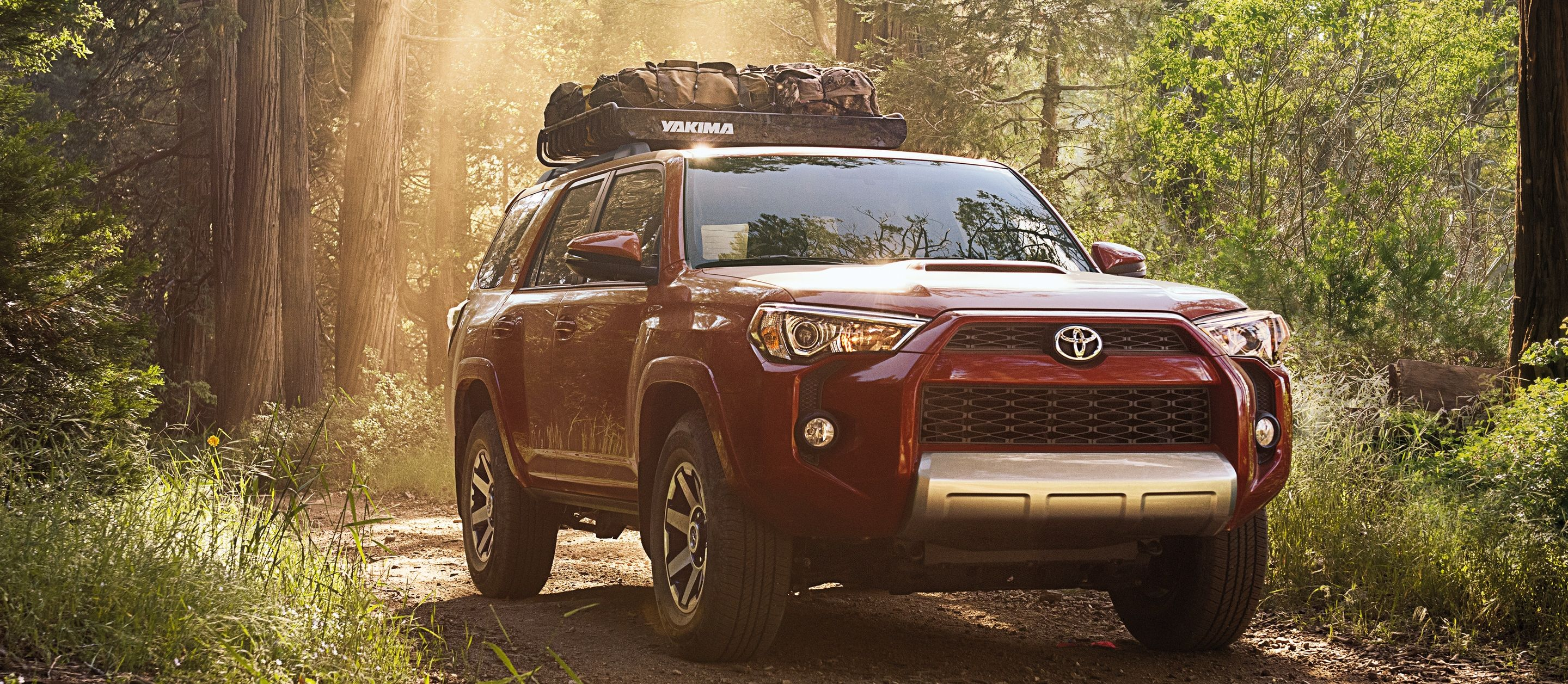 2019 Toyota 4Runner for Sale near Brighton, MI