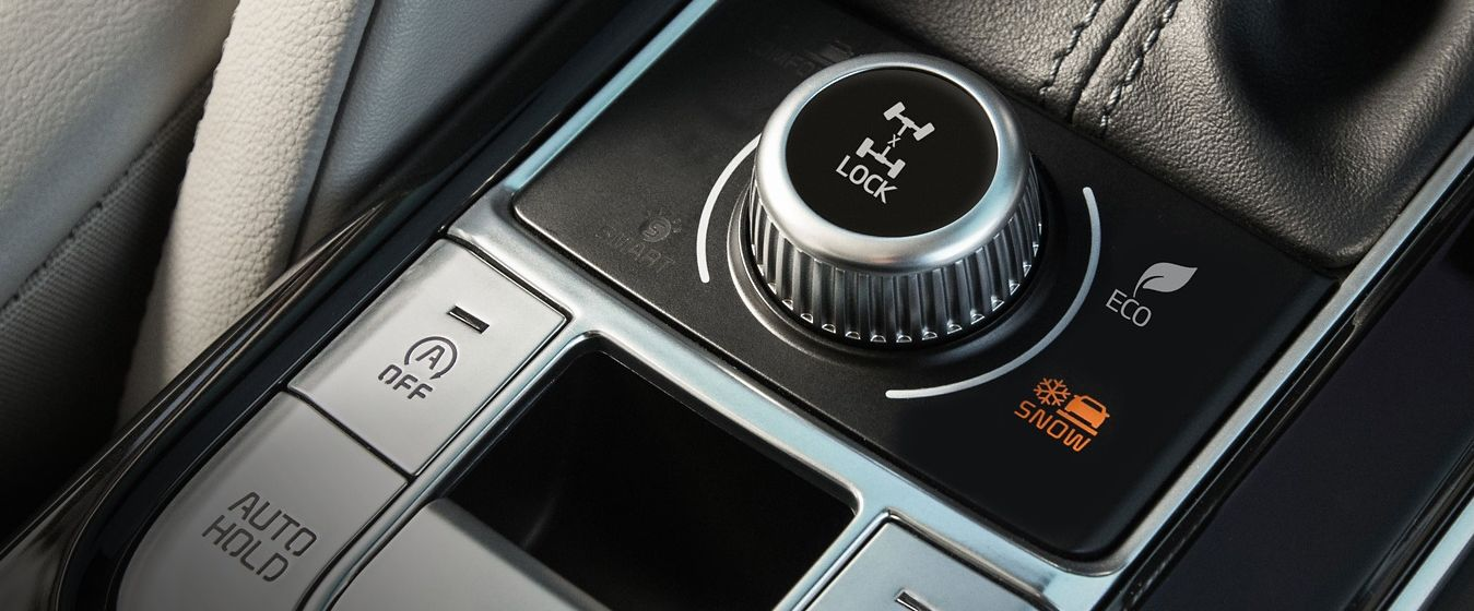 High-Performance Features in the Telluride