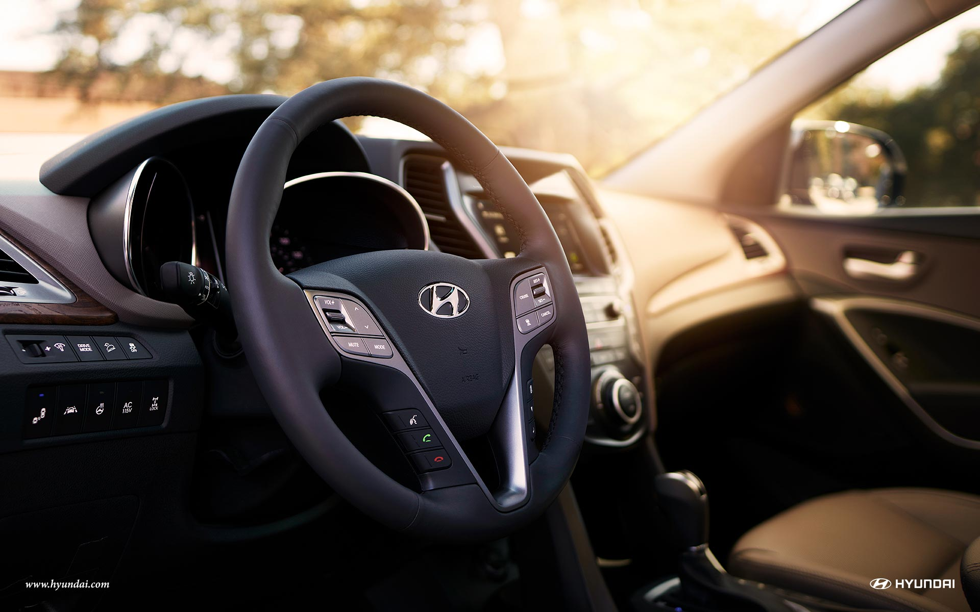 Leather Steering Wheel in the 2019 Santa Fe XL
