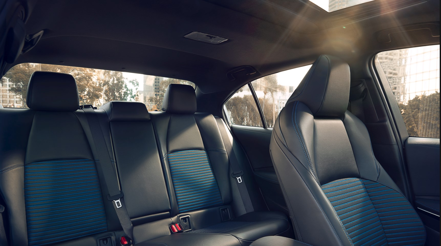 2020 Corolla Rear Seating