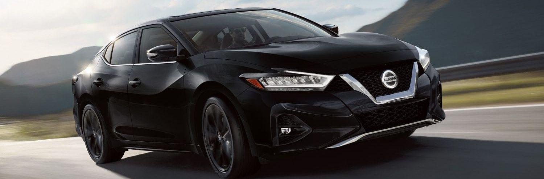 2019 Nissan Maxima for Sale near Huntington, NY