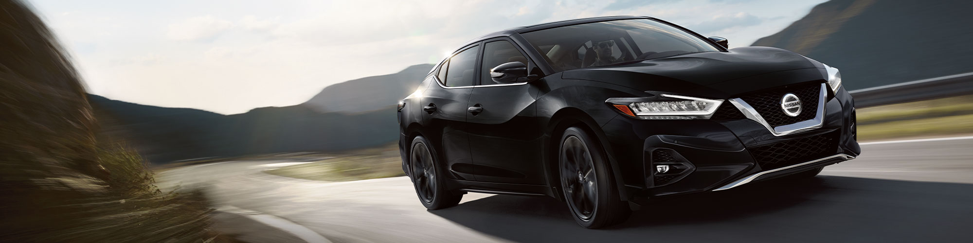 2019 Nissan Maxima horsepower