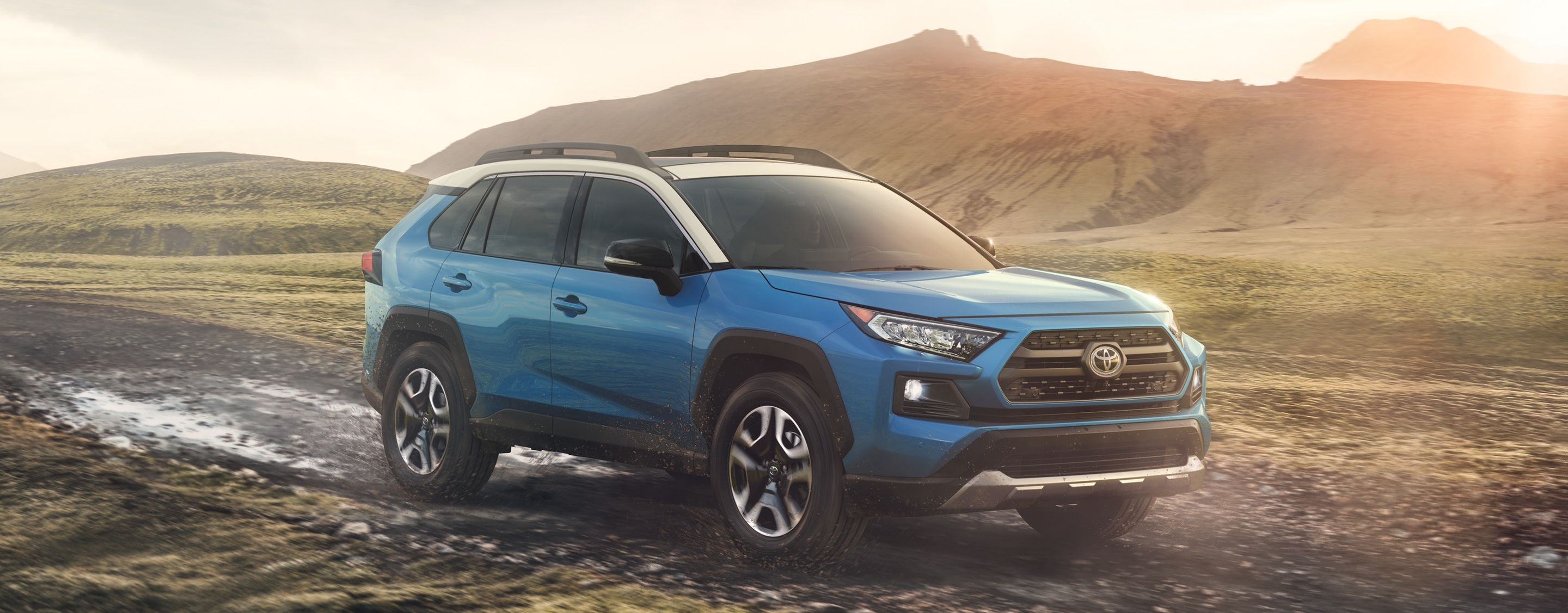 2019 Toyota RAV4 for Sale near Brighton, MI