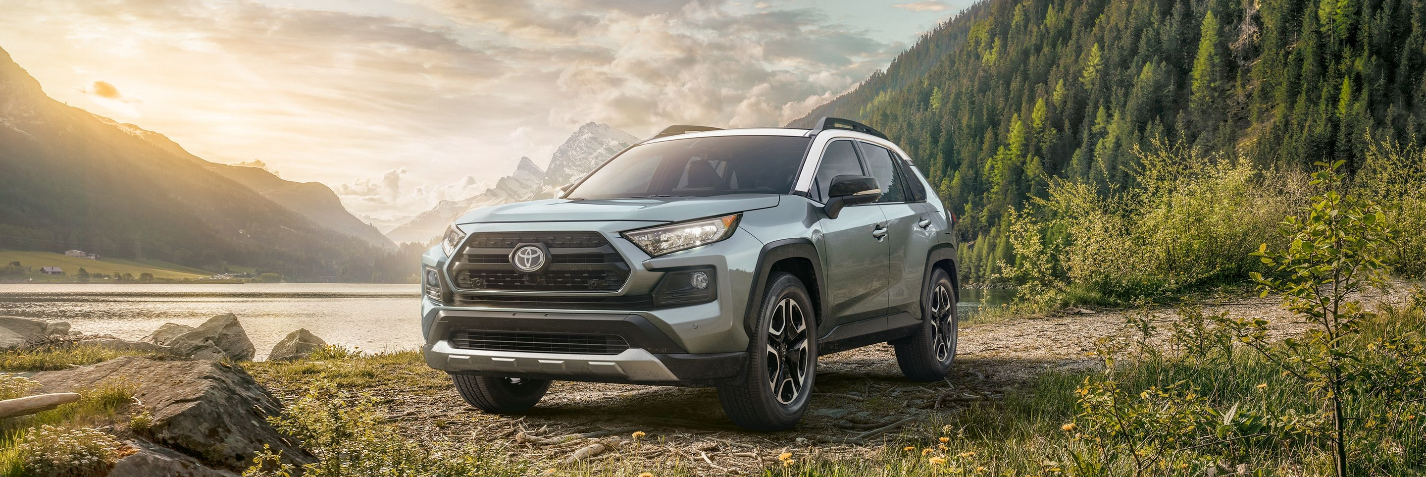 2019 Toyota RAV4 for Sale near Canton, MI