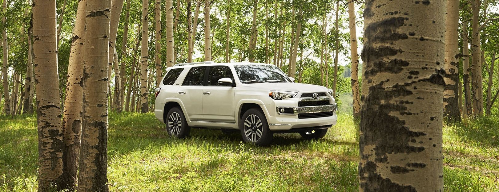2019 Toyota 4Runner for Sale near Kennett Square, PA