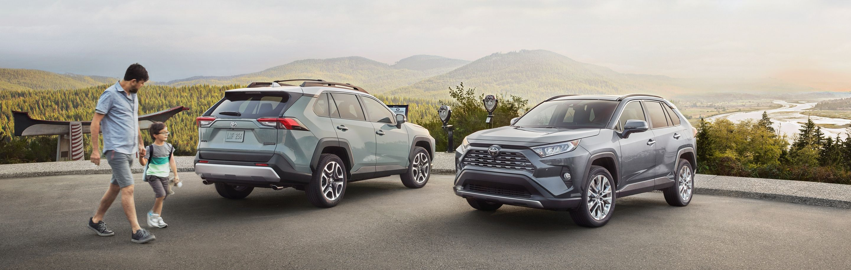 2019 Toyota RAV4 for Sale near Chicago, IL