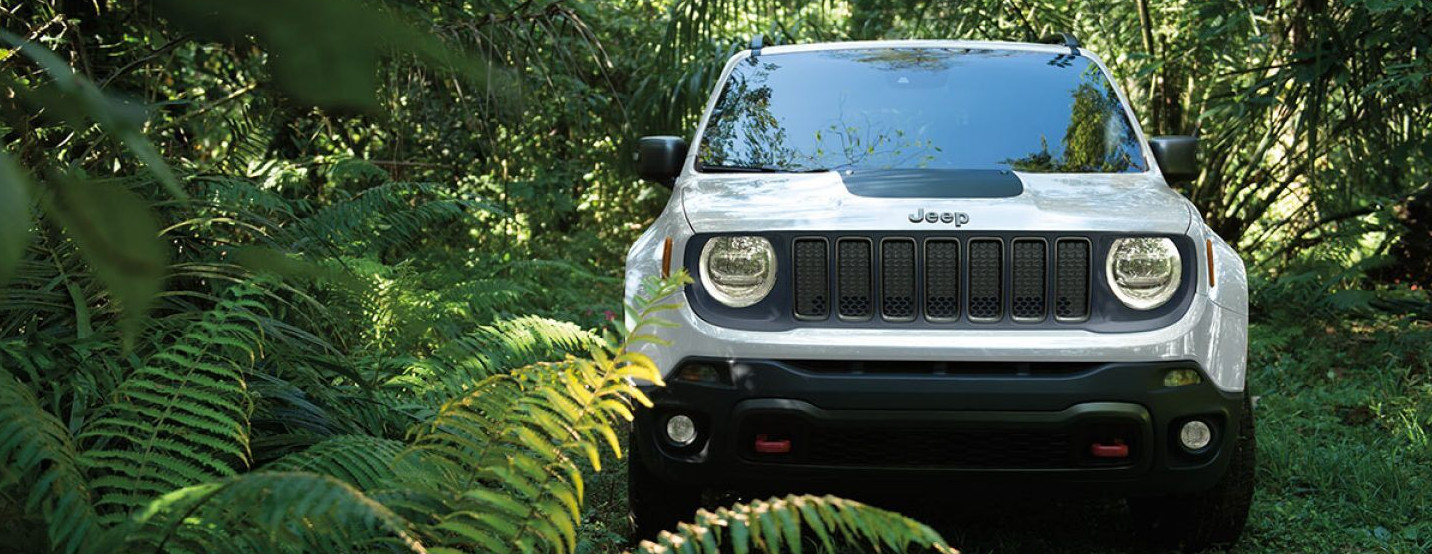 2019 Jeep Renegade for Sale near Orland Park, IL