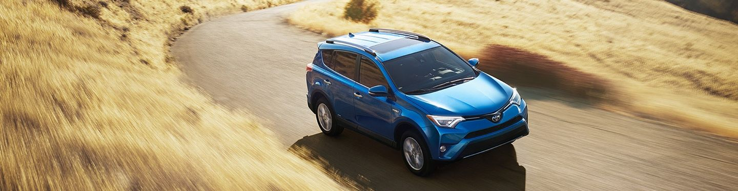 Check Out Our RAV4 Options!