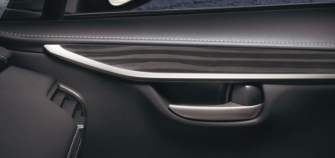Stunning Trim in the 2020 NX 300