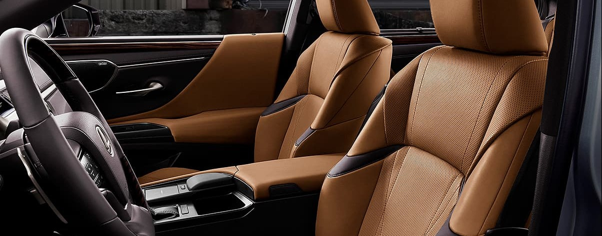 Breathtaking Cabin of the 2019 Lexus ES 350