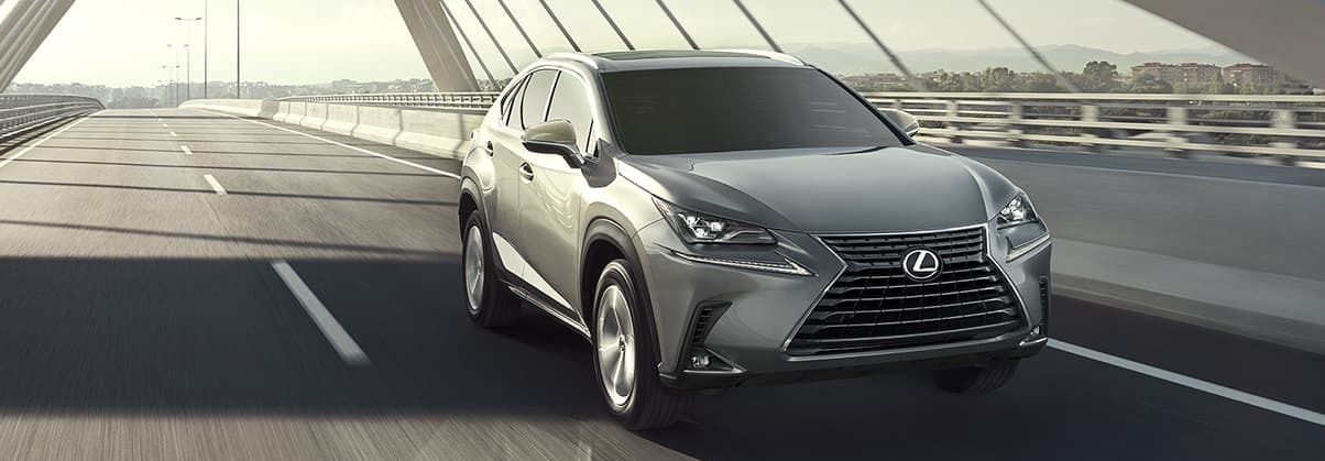 2020 Lexus NX 300 for Sale near Sylvania, OH