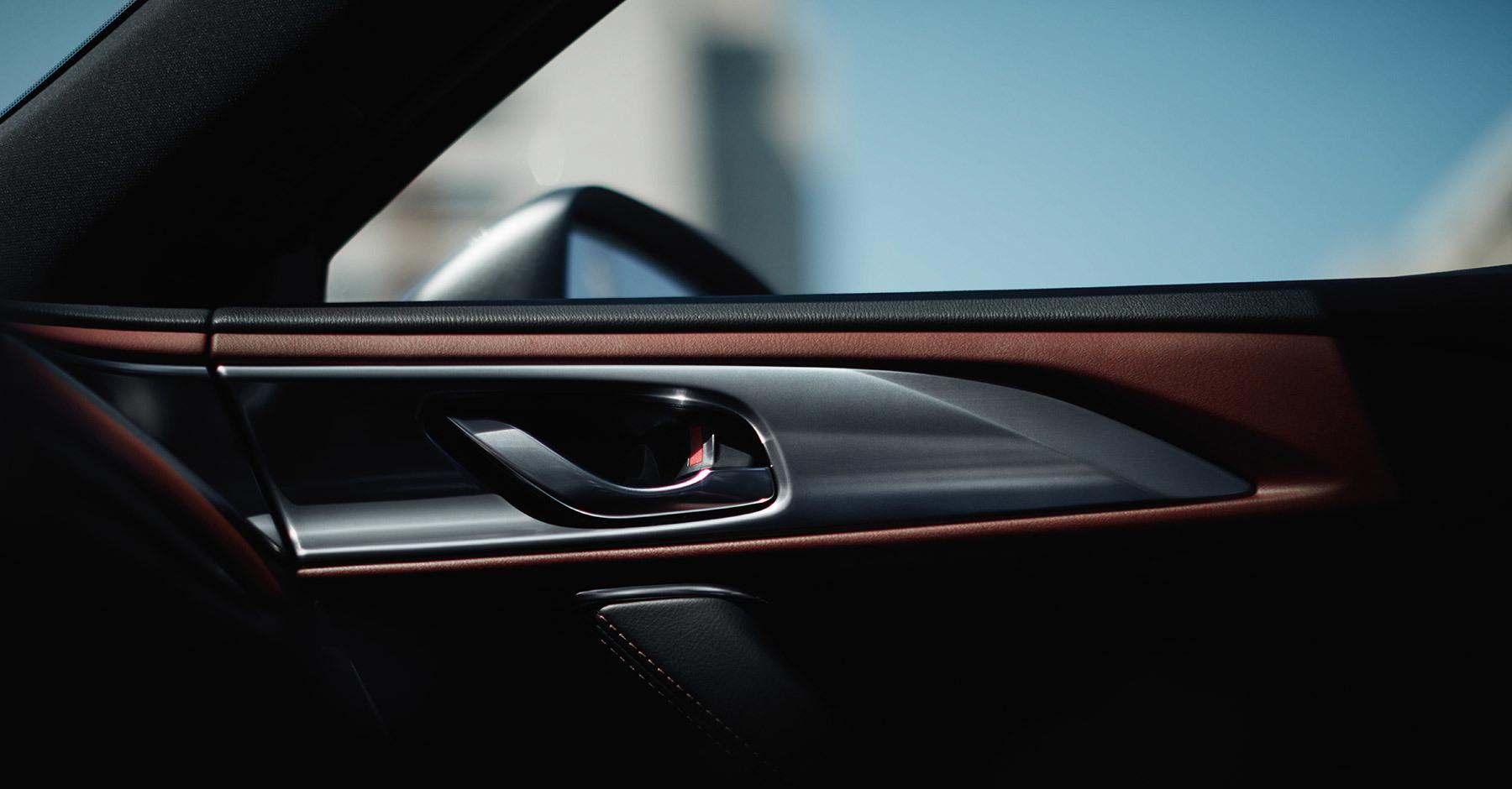 2019 Mazda CX-9 Interior Detailing
