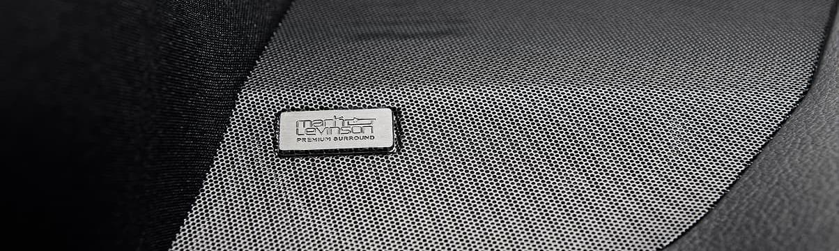 2020 Lexus NX 300 Speakers