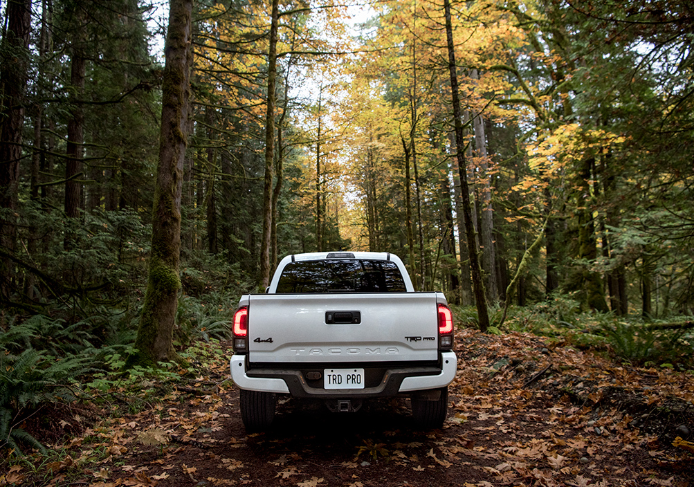 Model Features of the 2020 Toyota Tacoma at Tri County Toyota in Royersford | The rear view of the 2020 Tacoma
