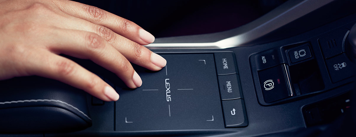 Remote Touchpad in the 2020 NX 300