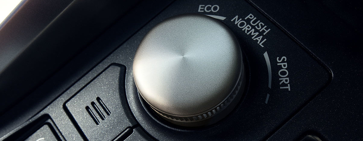 Driving Controls in the 2020 NX 300