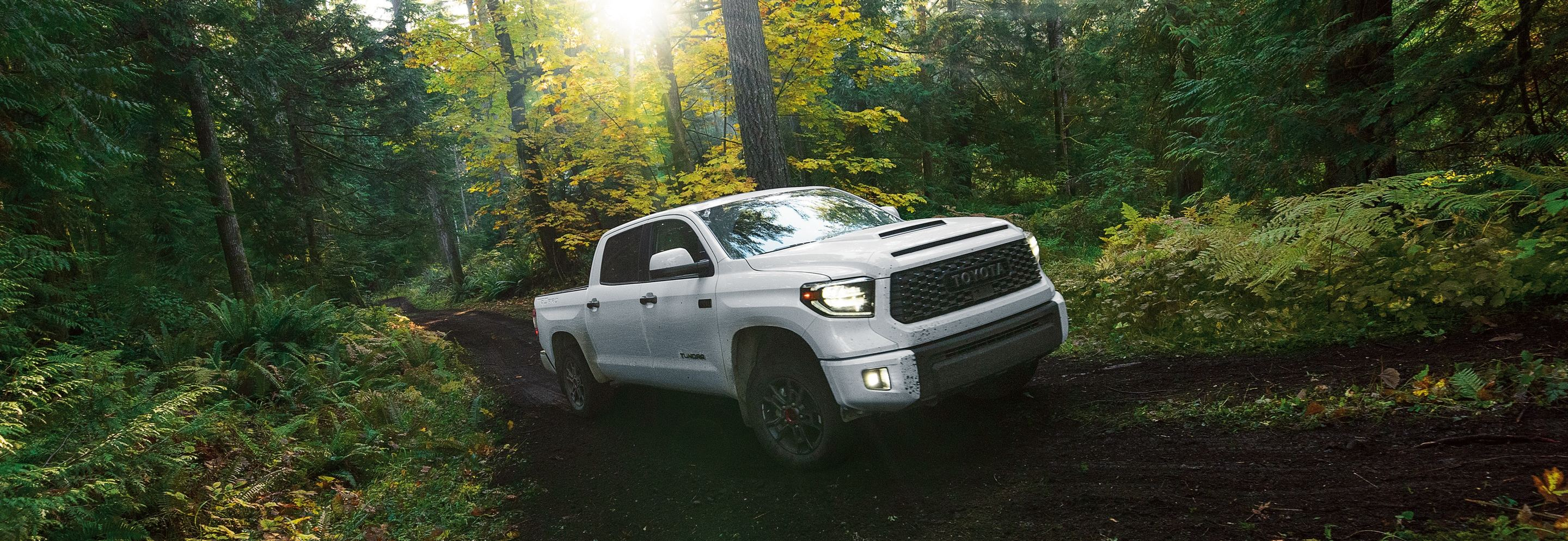 2020 Toyota Tundra for Sale near Crossville, TN