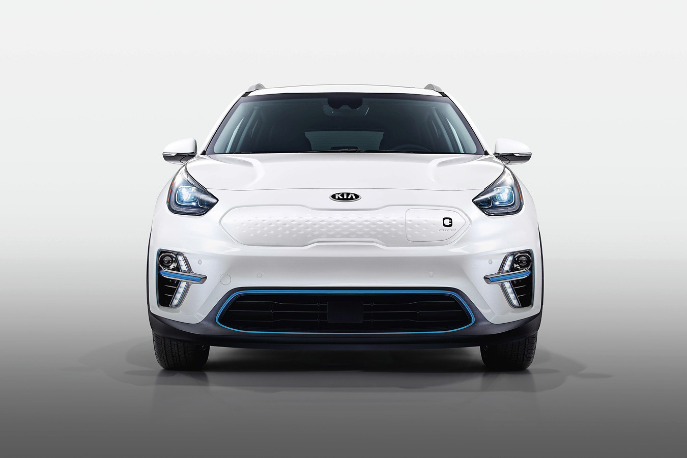 2019 Kia Niro EV Key Features near North County, CA