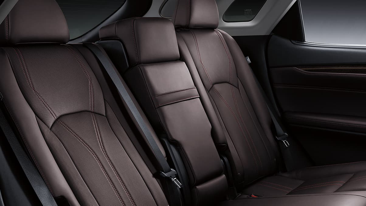 Back Row of the 2020 RX 350