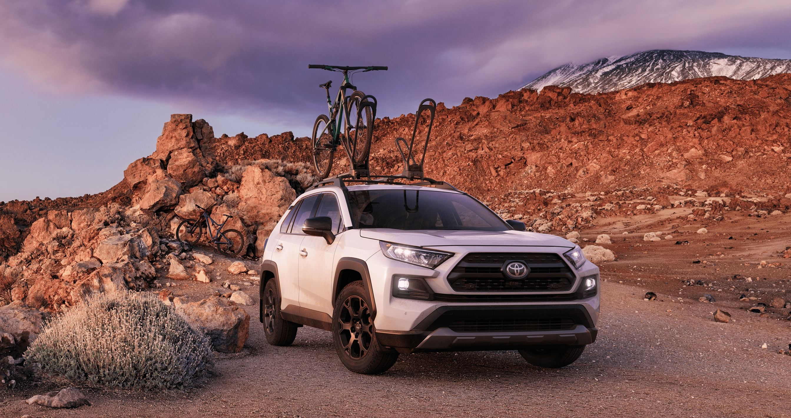 2020 Toyota RAV4 for Sale near Queens, NY