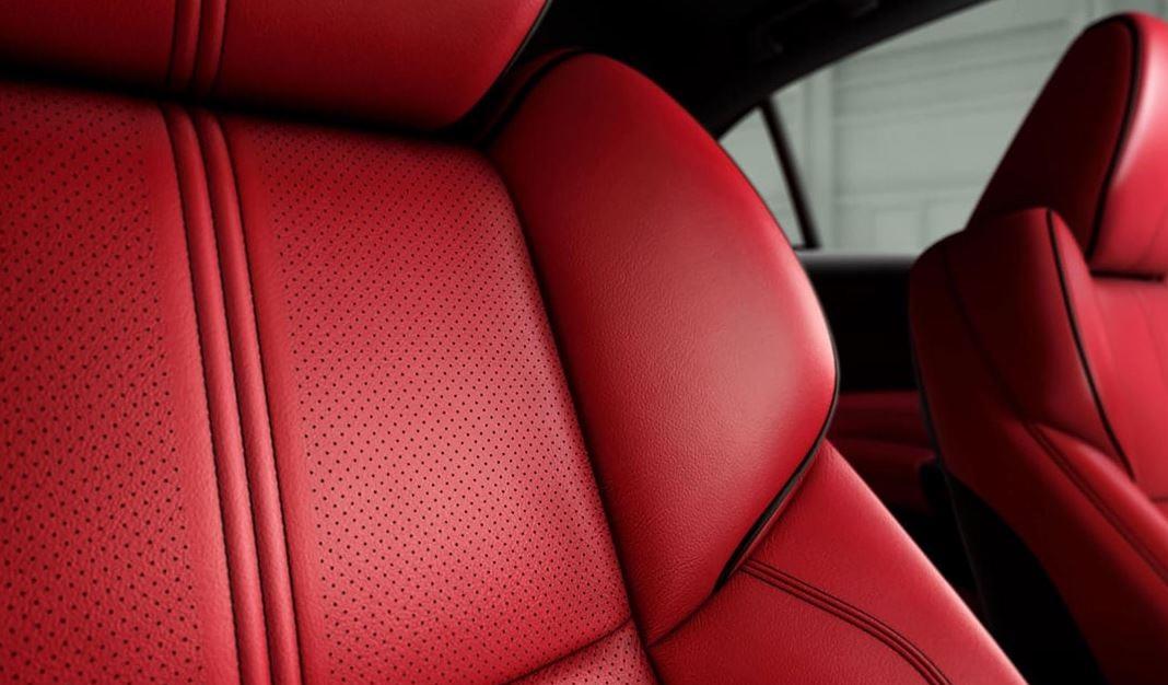 2020 Acura TLX Interior Detailing