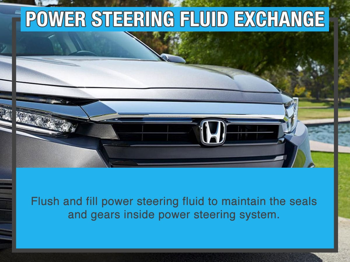 Power Steering Fluid Exchange