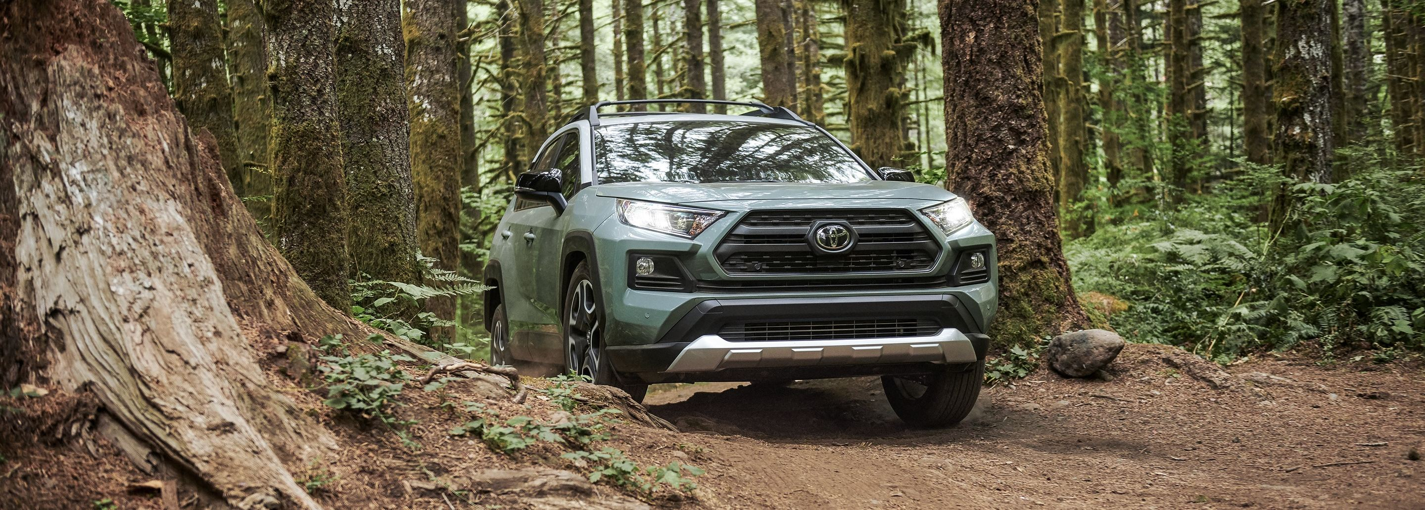2020 Toyota RAV4 Trim Levels in Cookeville, TN